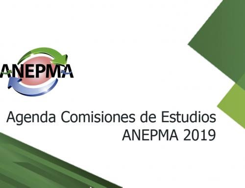 Agenda Comisiones de Estudios ANEPMA 2019