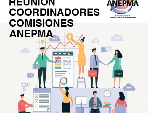 Reunión Coordinadores Comisiones ANEPMA