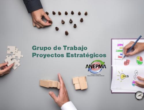 Proyectos Estratégicos ANEPMA