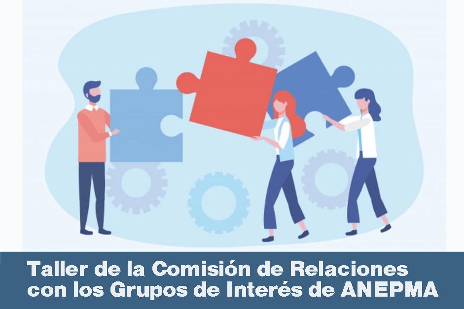 PORTADA Taller de la Comisión de Relaciones con los Grupos de Interés de ANEPMA